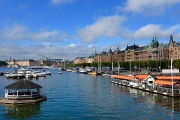 Stockholm Private Shore Excursion: City Tour + Vasa Museum + Boat Cruise
