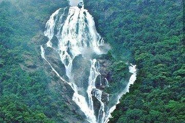 Dudhsagar Waterfall Trip with Jeep Safari & Spice Plantation