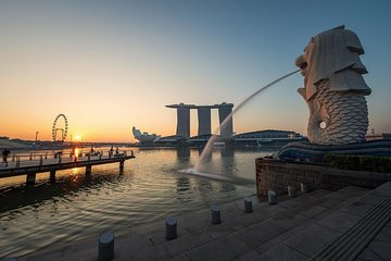 Singapore: 4 Hours - Private Car or Minibus Rental with Driver