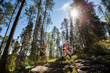 2.5 Day Wellness and Sauna holiday by Nuuksio National Park (Helsinki Area)