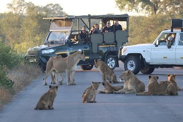 Private 3 Day Kruger Park Safari from Johannesburg