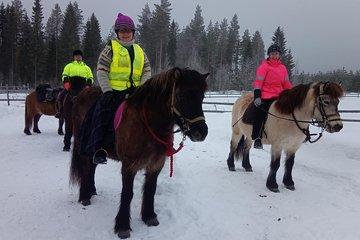 Finland Top Horseback Riding (w/Prices)