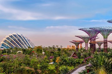 Gardens by the Bay with Hotel Pick Up