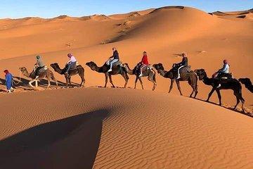 Shared Group Sahara Desert Tours from Marrakech
