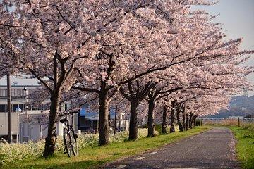[PM1: 30 ~] East Tokyo E-Bike tour (Asakusa, Akihabara, Sensoji Temple, Sky Tree)