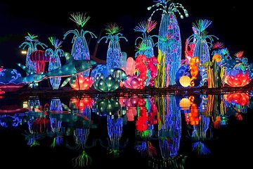 Dubai Garden Glow 2020 All You Need To Know Before You Go With Photos Tripadvisor