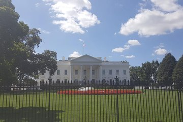 Washington DC: small group tour with a native