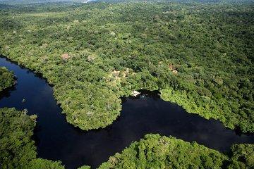 Pantanal & Amazon Holiday