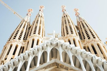 Private Sagrada Familia and Park Guell with pickup