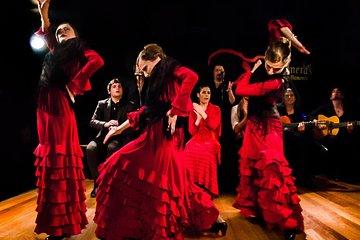 Madrid: Night tour, Flamenco and Dinner show