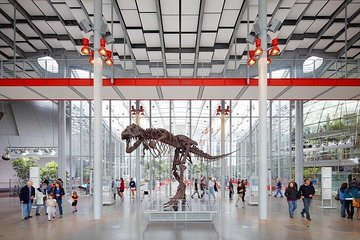 California Academy of Sciences General Admission Ticket: Skip the Line