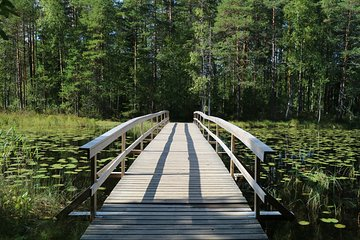 Nuuksio & Shopping and Airport Transfer Japanese Driver Private Car Plan