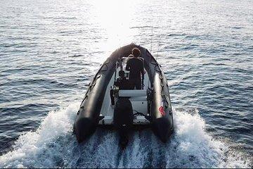 YFS - Whale Watching - Monaco - Cap D'ail - Beaulieu - Nice