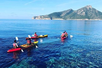 Explore the bay of Sant Elm and the island of Dragonera with a kayak
