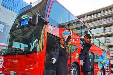 Tokyo Hop-On Hop-off Bus Day-Pass