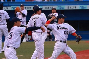 Baseball Experience with Yakult Swallows