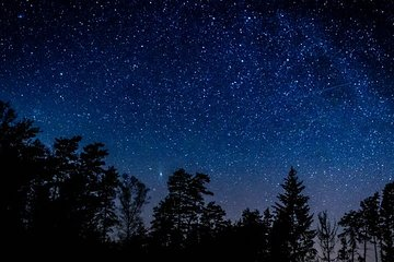 Stargazing in Sequoia National Park