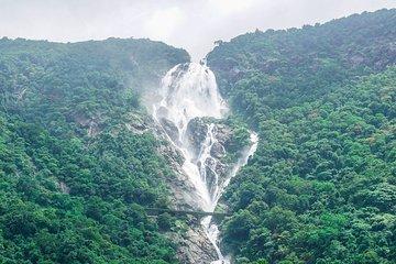 Full-Day Tour Old Goa Dudhsagar Falls and Spice Plantation