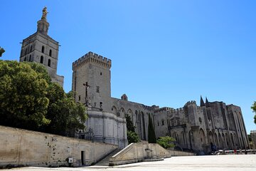 Avignon's history, local culture & the wines of Châteauneuf du Pape private tour