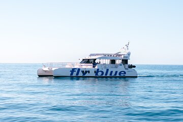 Swimming Cruise in Malaga - Fly Blue