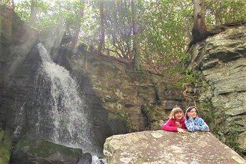 Hidden Cascade Hiking Tour in Great Smoky Mountains from Gatlinburg
