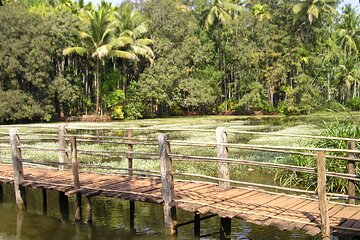 Highlights of South Goa with Spice Plantation Tour (Guided Fullday Tour by Car)