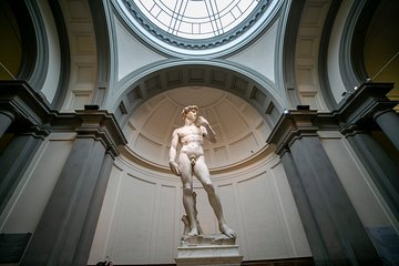Michelangelo's David Tour with Skip-the Line Tickets and Accademia Gallery Visit