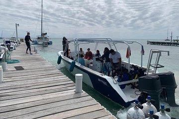1-Tank Scuba Diving Ambergris Caye