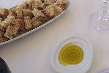 Alentejo Olive Oil Tour