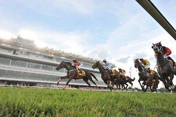 Private Tour - Singapore Turf Club: Horse Racing