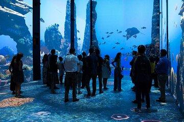 Oceanographic Museum of Monaco and Aquarium Entry Ticket