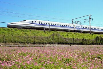 2-Day Universal Studios Japan Experience from Tokyo by Bullet Train