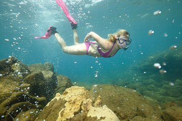 Champagne Reef, Bubble Beach and Scotts Head Snorkeling tour by boat in Dominica