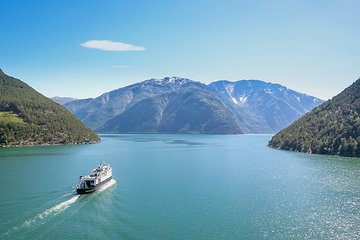 Day tour from Oslo to Bergen, incl Flåm Railway and Sognefjord Cruise