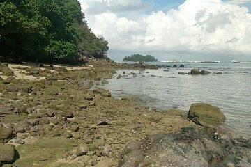 Southern Islands - St John's Island and Kusu Island
