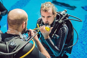 Try diving in the pool or open water