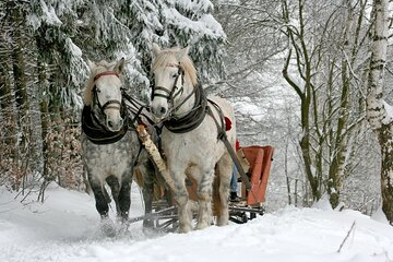 Sleigh Ride with Bonfire -Private Day Trip from Krakow