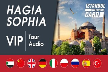 Istanbul: Hagia Sophia VIP Priority Entry, Highlights Tour and Audio Guide App