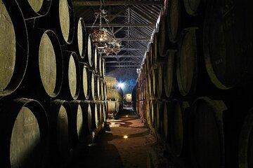 Lisbon - Private Wine Tasting Tour to the Setubal Wine Region