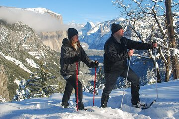 Private Guided Snowshoe Hike in Yosemite