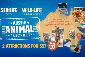 Sydney Attractions Pass: SEA LIFE Aquarium, Sydney Tower Eye, WILD LIFE Zoo and Madame Tussauds