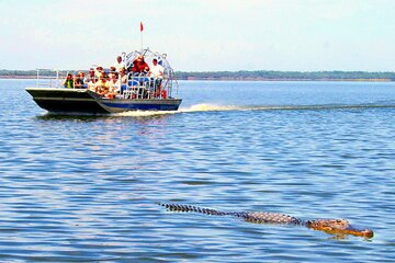 Everglades National Park Fan-Boat with or without roundtrip transport