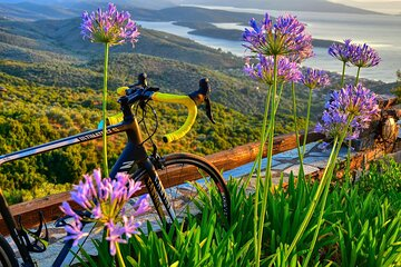 Family & Small-Group Bike-Hike & Cruise Activity Tour in Pelion