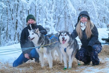 Husky Dog Sledding & Mushing with Pick up and Photo Service in Fairbanks, Alaska