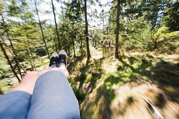 Small Group Zipline Adventure 2021 Vancouver Island