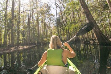 Half-Day Shingle Creek Guided Kayak Tour with Lunch and Roundtrip Transport