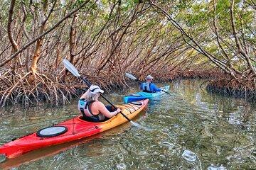 Visit Passage Key National Wildlife Refuge on your trip to