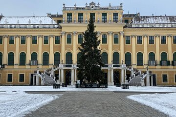 Guided Walking Tour of Schonbrunn Palace in Vienna