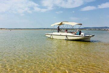 Faro Eco Boat Tour – Birdwatching in Ria Formosa