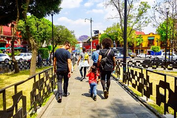 Mexico City Creative Coyoacan Private Custom Tour with a Local Guide ★★★★★